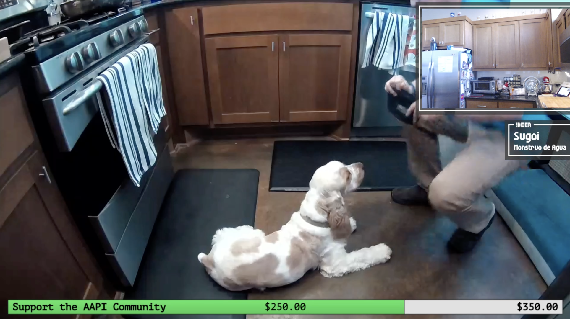 Can't forget the dog cam!